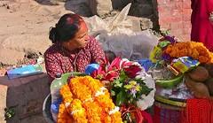 "NEPAL, Pashupatinath,Hindutempel und Verbrennungsstätte, 16298/8632 (roba66) Tags: menschen people leute frau woman portrait lady portraiture reisen travel explore voyages roba66 visit urlaub nepal asien asia südasien kathmandu pashupatinath ""pashu pati nath"" ""pashupati ""herr alles lebendigen"" tempelstätte hinduismus shivaiten tempel verehrungsstätte shiva tradition religion"
