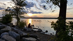 fishing (thomas.erskine) Tags: 20170628 202556lev 2017 jun summer sunset river ottawa fishing tree clouds frame