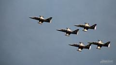 1B3A0978-BREITLING (mg photographe) Tags: meeting aerien avion jet patrouille breitling dijon ba102 plane show