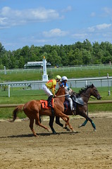 "2016-07-10 (54) Jose Montano on #7 Morning Vow (JLeeFleenor) Tags: photos photography maryland md marylandhorseracing laurelpark horseracing jockey جُوكِي ""赛马骑师"" jinete ""競馬騎手"" dżokej jocheu คนขี่ม้าแข่ง jóquei žokej kilparatsastaja rennreiter fantino ""경마 기수"" жокей jokey người horses thoroughbreds equine equestrian cheval cavalo cavallo cavall caballo pferd paard perd hevonen hest hestur cal kon konj beygir capall ceffyl cuddy yarraman faras alogo soos kuda uma pfeerd koin حصان кон 马 häst άλογο סוס घोड़ा 馬 koń лошадь"