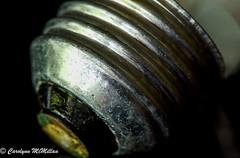 Bottoms Up-Macro Mondays HMM (Carolynn McMillan) Tags: macromondays bottomsup lightbulb macrobottom base