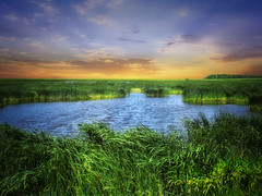 Dakota wetlands 1 (mrbillt6) Tags: northdakota landscape rural prairie wetlands pond waters grass field country countryside outdoors