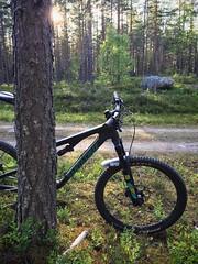 Evening Biking 1 (pjen) Tags: nordic freedom boreal maastopyörä pike 275 650b kashima trail bicycle bike 2x11 outdoor vehicle 5010 5010cc 50to01 summer santacruz mtb finland nature forest carbon fullsuspension hiilikuitu