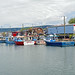DSC07739 - Fishing Fleet