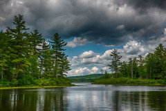 Wood-Creek-6.28 (desouto) Tags: nature landscape pond lake trees sky flowers textures