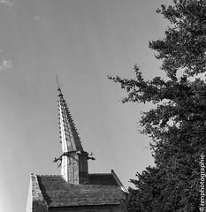Tordu. (renphotographie) Tags: analog argentique noiretblanc monochrome rolleiflex fomapan400 film120 église tordu