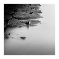 stone net 2 (savillejoe) Tags: japan lake lakekasumigaura longexposure bnw waterscape ndfilter 10stops leefilters bw nets nikon d5 2470mm stone le 霞ヶ浦 茨城県