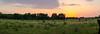 Fading_Sun (briarphotos) Tags: briarphotos nikon nikon18200mm panorama sunset