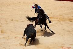 Pablo Hermoso de Mendoza (Bernard des Sagnes) Tags: canon france occitanie languedoc gard nîmes féria corridaderejón rejón pablohermosodemendoza toro