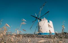 The Old Mill (ruicâmara) Tags: fujifilm xt2 old mill blue sky wind sunny rui câmara xtrans portugal photooftheday