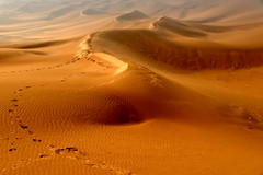 Kumtag Desert 庫姆塔格沙漠 (MelindaChan ^..^) Tags: xingjiang china 新疆 鄯善 庫姆塔格沙漠 4wd adventure desert 庫姆塔格 沙漠 sand city nature kumtagdesert tarim basin 4wheeldrive chanmelmel mel melinda melindachan xinjianguyghurautonomousregion life travel tourist