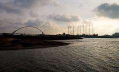 _DSC7660 (durr-architect) Tags: spiegelwaal ruimte room river waal nijmegen netherlands high water flood island bridge nevengeul