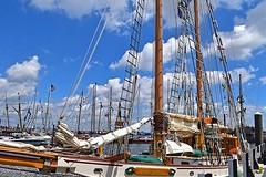 Tree of Life (AntyDiluvian) Tags: boston massachusetts harbor tallships sailboston pier dock wharf treeoflife schooner mast boom furledsail