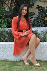 Indian Actress NIKESHA PATEL Hot Sexy Images Set-1 (90)
