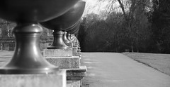 It's urns all the way down (Anxious Silence) Tags: blackandwhite buckinghamshire gardens landscape nationaltrust places seasons stowe stowelandscapegardens winter classical urn