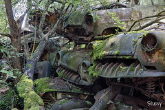 SP-2 (StussyExplores) Tags: austria scrapyard vintage cars teeth rust decay abandoned left behind vehicles explore exploration urebx