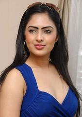 Indian Actress NIKESHA PATEL Hot Sexy Images Set-1 (32)