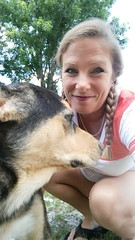 Max being shy  #dogs #huskymix #pitbullmix #shydog (hairwegomonat) Tags: dogs shydog pitbullmix huskymix