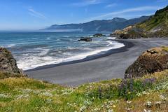 Black Sand Beach (Amy Hudechek Photography) Tags: black wave california northern wildflowers spring mountains water amyhudechek nature