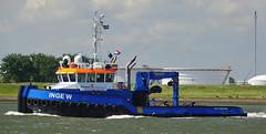 INGE W (kees torn) Tags: ingew tug rosa duwboot stematmarineservice hetscheur smitbarge offshore