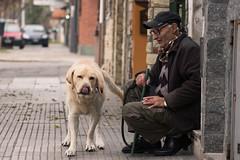 BDT [dúo] (Letua) Tags: bdt2017 buenosaires lvm amigos amistad amor barrio dogs dos duo friendship love mascota perro persona pet portrait retrato robado two urbana