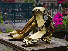 Stylish (diarnst) Tags: schuhe shoes gold damenschuhe womensshoes