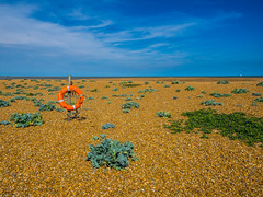 Lonely (Nigel Wallace1) Tags: beach lifering sos wideangle sky suffolk ring orange shingle nature beautyinnature olympus omdem1 1240mm empty sun horizon safety