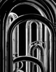 Cathedral (andras.mihaly) Tags: bw bowensesprit500w toyoview45c tmax100 sekonic l758 largeformat jobo multitank 2 210mm rodenstock tuba striplight selfdevelop agfa final