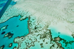 THE reef (marin.tomic) Tags: australia australien queensland reef nature landscape flight panorama greatbarrierreef travel downunder oz water sea ocean whitsundays