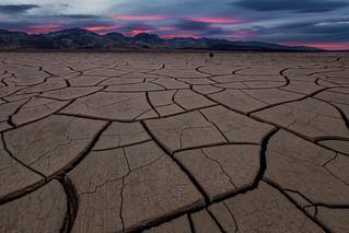 The Desert Basin