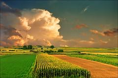 Pannonia (Katarina 2353) Tags: landscape sunset katarinastefanovic katarina2353