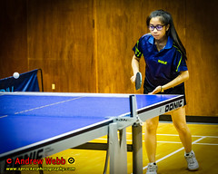 BATTS1706JSSb -403-119 (Sprocket Photography) Tags: batts normanboothcentre oldharlow harlow essex tabletennis sports juniors etta youthsports pingpong tournament bat ball jackpetcheyfoundation