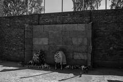 Auschwitz I - Executiemuur (Lars Blaauw) Tags: auschwitz birkenau blackandwhite concentratiekamp concentrationcamp deathcamp geschiedenis historie history holocaust konzentrationslager massamoord oorlog oświęcim poland polen polska tweedewereldoorlog vernichtungslager war worldwar2 zwartwit