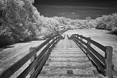 Dead Man Hill Hines-14 NIK (dragos.tranca) Tags: michigan northville infrared bw canon t5 18135mm 3556 stm landscape cityscape
