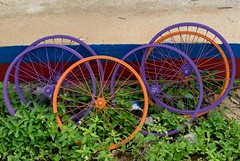 Bicycle Rims (sydbad) Tags: bicycle rims sony sonya7 loxia loxia250