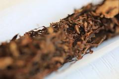 Tabaco (Pascal Volk) Tags: berlin berlinlichtenberg tabak tabaco tobacco canoneos6d sigma105mmf28exdgoshsmmacro sigmaapoteleconverter14xexdg macro makro 147mm closeup nahaufnahme macrodreams bokeh dof depthoffield manfrotto mt294a3 804rc2 poisonous toxic giftig tóxico venenoso ☠ 💀 macromondays