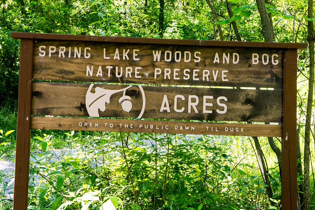 Spring Lake Woods and Bog Nature Preserve - June 7, 2017