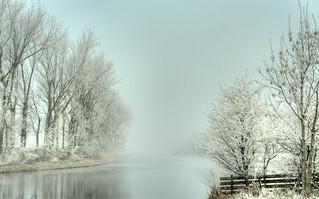 Fiercely frosty fog.