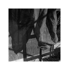 (billbostonmass) Tags: ilford delta 100 14ddx68f12min film hasselblad 80mm planar t epson v800 massachusetts ddx urban