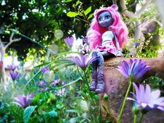 (Linayum) Tags: mouscedesking monsterhigh monster mh mattel doll dolls muñeca muñecas spring flowers flores margarita linayum toys juguetes