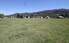 Lot 3 & 4, 155-161 Little Street, Murrurundi NSW