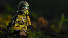 A Simple Morning on Kashyyyk (Lego_LUTs) Tags: yellow purple green blue storm trooper star wars war lego outdoors clone troopers first order blasters afol minifigs minifigures bricks blocks canon toy toys force legos t3i republic people photoadd atst death rogue one dirt practical effects orange 60mm