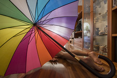 25/52 & FDT-112 Too many superstitions together (- Cajón de sastre -) Tags: flickrfridays diagonal fdt fdtforlife facedowntuesdaygroup i♥facedowntuesday creativephotography creativeselfportrait autoretrato selfportrait inside paraguas umbrella arcoiris rainbow nikond500 tokinaatx1120mmf28prodx week252017 52weeksthe2017edition weekstartingsundayjune182017 week25theme naturallight