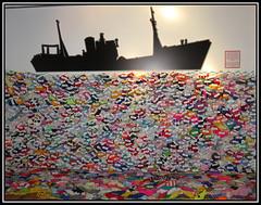 Shoal Of Souls (Margaret Edge the bee girl) Tags: trawler boat fish knitted streetlifemuseumoftransport hull yorkshire colours memorial