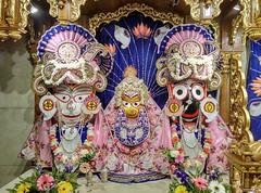 Gaura Arati - ISKCON-London Radha Krishna Temple Soho Street - 24/06/2017 - IMAG4056 (DavidC Photography 2) Tags: 10 soho street london w1d 3dl iskconlondon radhakrishna radha krishna temple hare harekrishna krsna mandir england uk iskcon internationalsocietyforkrishnaconsciousness international society for consciousness saturday gaura arati darshan 24 24th june 2017 summer