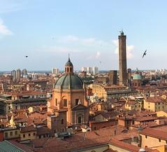 Bologna (massimo palmi) Tags: bird italy capolavoro rooftop tetti torri towers tower centrostorico city bologna