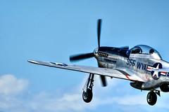 Take off!! (CORDAN) Tags: cordan dmyers nikond500 tamronsp150600mmg22017 blueskies collinsfoundation wingsoffreedom p51 mustang