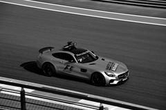 2016 MERCEDES AMG GT F1 SAFETY CAR (dale hartrick) Tags: 2016mercedesamggtf1safetycar mercedesamggtf1safetycar mercedesamggt safetycar mercedes amg f1safetycar motorsport nikond800 nikon d800 freepractice f1grandprix racing 2016abudhabigp abudhabigp yasmarinacircuit westgrandstand