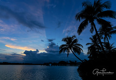 Florida Life: Jupiter Island Blues (Thūncher Photography) Tags: sony a7r2 sonya7r2 ilce7rm2 zeissfe1635mmf4zaoss fx fullframe scenic landscape waterscape nature outdoors sky clouds colors sunset reflections shadows silhouettes tropical palmtrees jupiterisland hobesound martincounty intracoastal florida southeastflorida