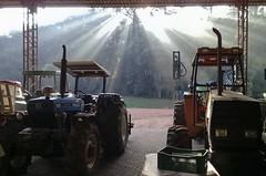 Máquinas_04 (Parchen) Tags: máquinas maquinário agrícola galpão galpãodemáquinas fega sol nascer nascerdosol contraste contraluz raios solares luz tratores trator tratoragrícola foto fotografia imagem registro parchen carlosparchen